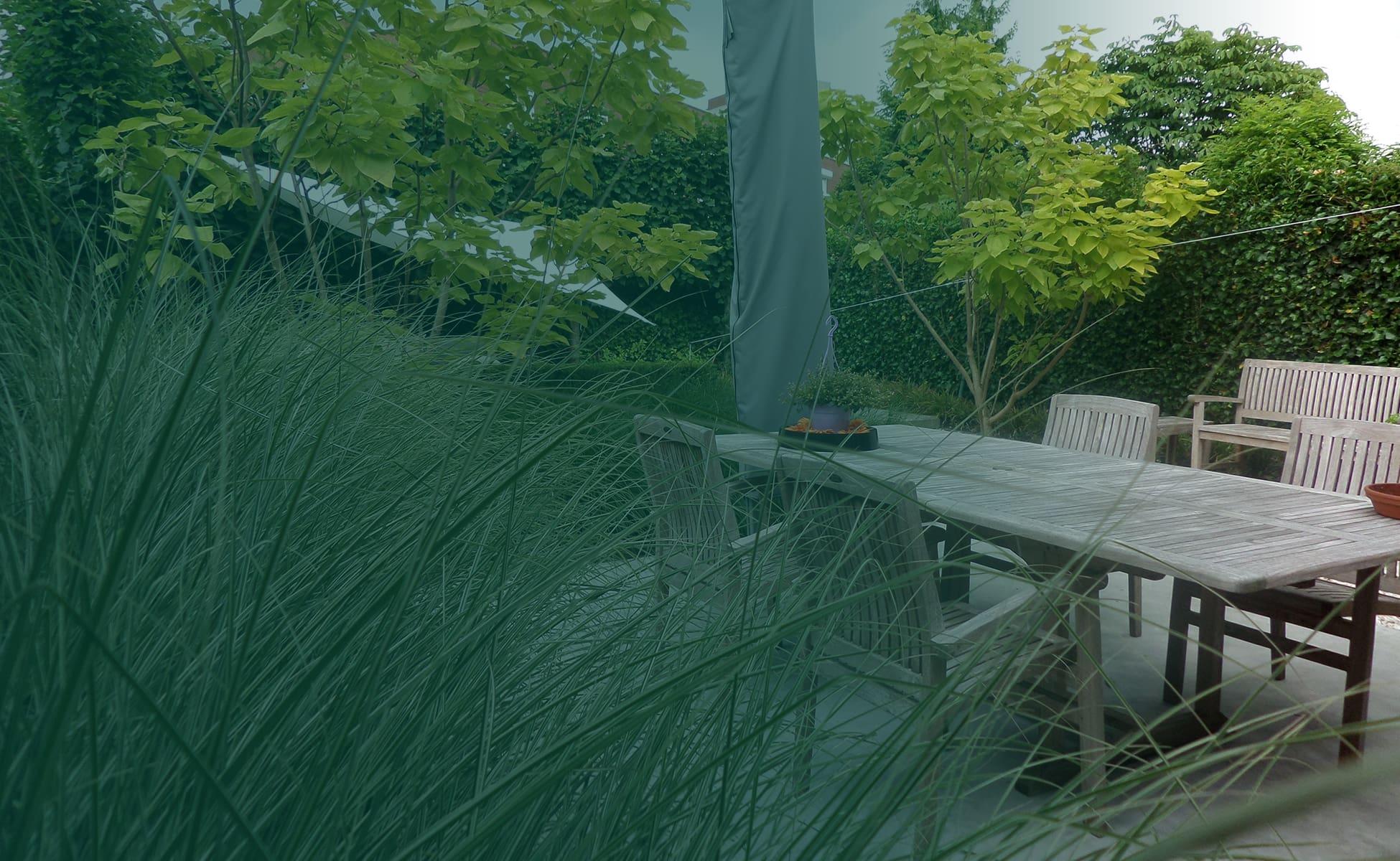 Dé tuinman voor uw tuinonderhoud