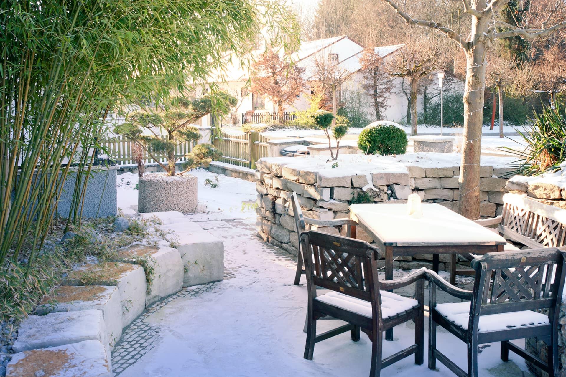 Garden in Winter with Snow