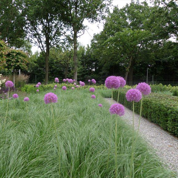 Landelijke tuin ontwerp