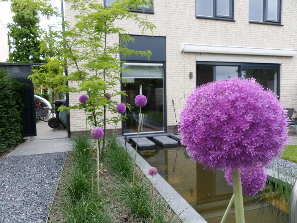 Dordrecht - tuinontwerp, tuinadvies en tuinaanleg